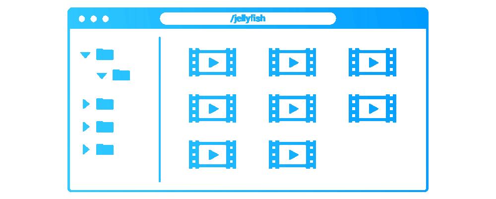 Jellyfish media engine browser